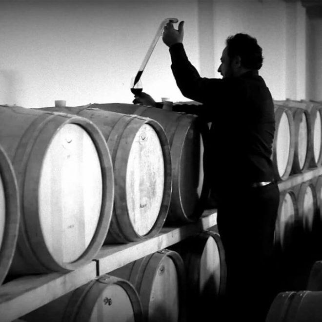 Panos Lantides test de kwaliteit van de rijpende wijnen