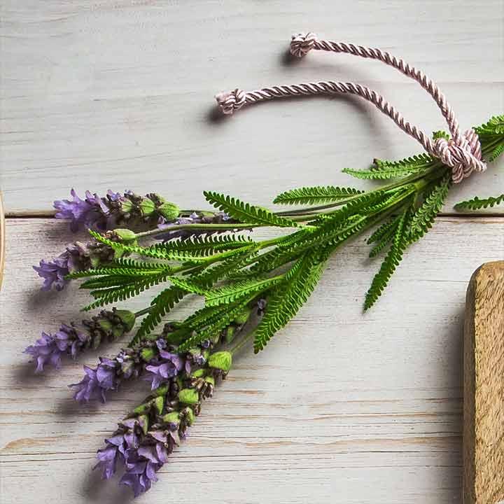 Lavendel hydrateert en verzacht de huid